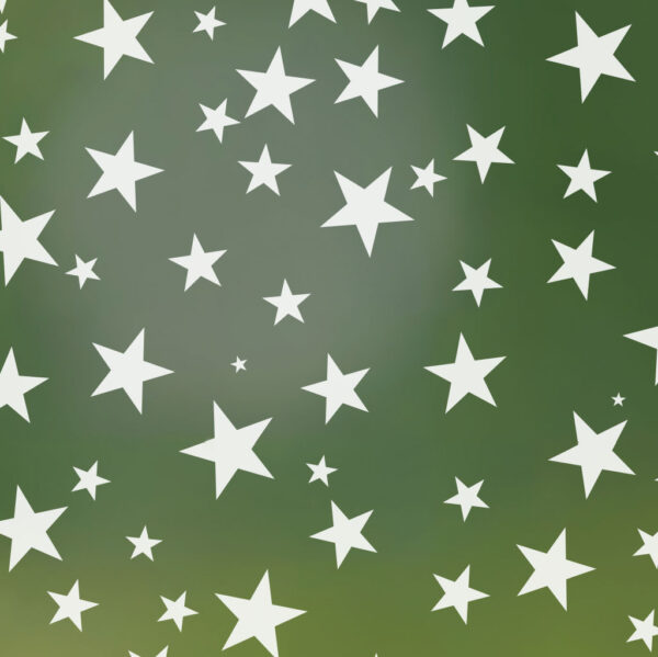 Star Struck Frosted Privacy Window Film   Odhams Press