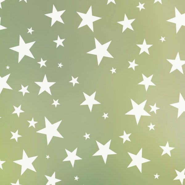 Star Struck Frosted Privacy Window Film | Odhams Press